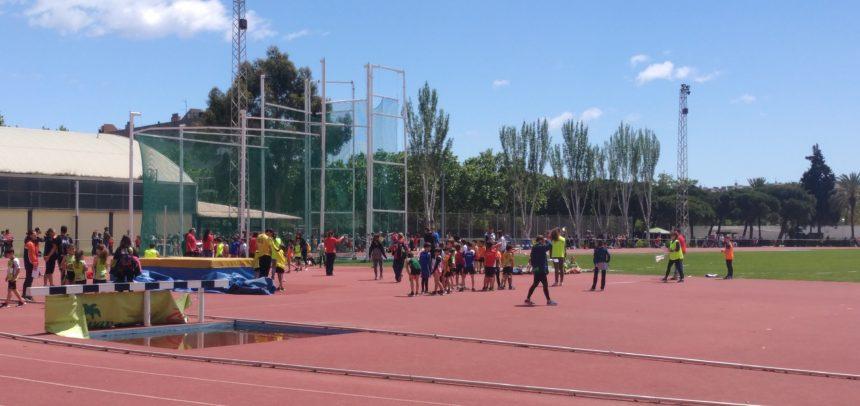 CAMPIONAT DE CATALUNYA ADAPTAT-OPEN I DOS CAMPIONATS DE CLUBS